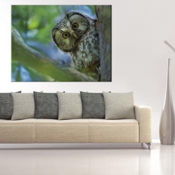 15x11 Digital print Canvas sentinel owl to your wall owl on the tree (size: 15x11 inch plus border).