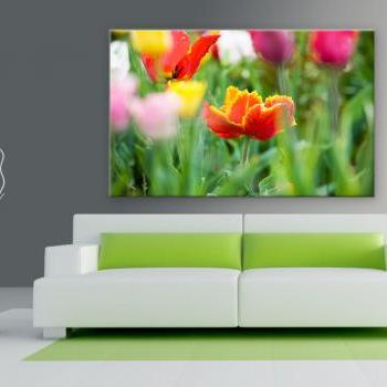 16x10 Digital printed Canvas tulip flower to your wall (size: 16x10 inch plus border).